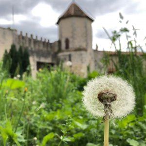 Dans un monastère médiéval, l'effet de pierre de Del Conca Instagram%20(1) - Ceramica del Conca