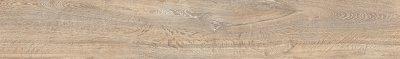 articoli - del Conca - orto%20botanico - 24OB01R