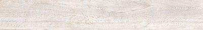 articoli - del Conca - orto%20botanico - 24OB10R